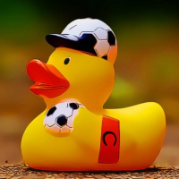 Yellow Ducks Puzzle